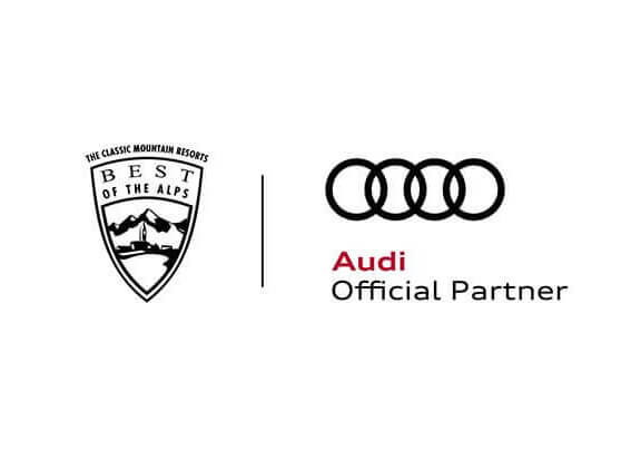 Audi Partnership